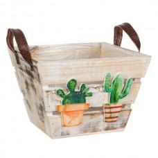 Ghiveci ladita lemn Cactusi